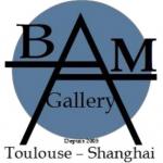 Galerie d 'Art - Agent d 'Artistes - Fiscalité du Marché de l 'Art
